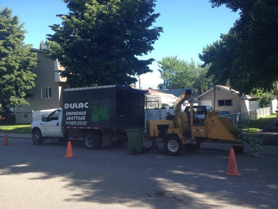 Camion pour entretien des arbres